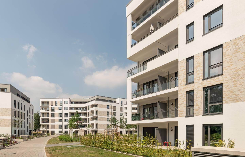 Südstadtgarten_8944-3